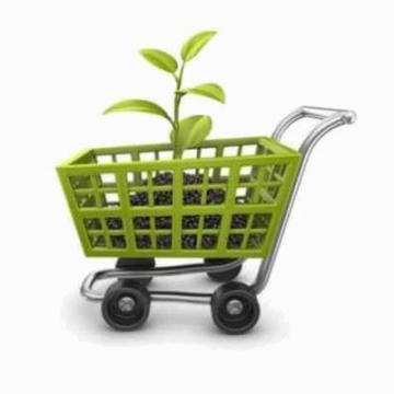 La compra online es una actitud de compra ecológica